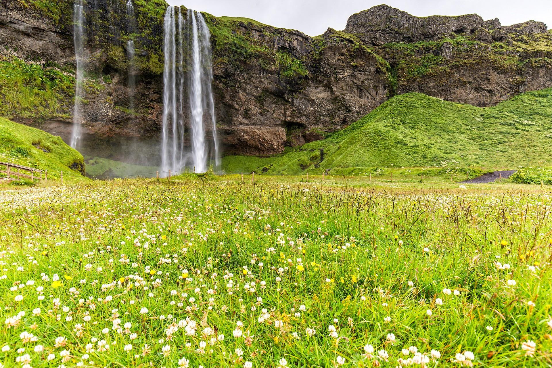 Reis op IJsland